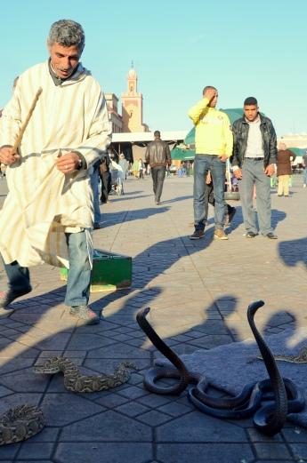 Top Morocco 2012_9