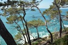 Top Portofino 2013_15