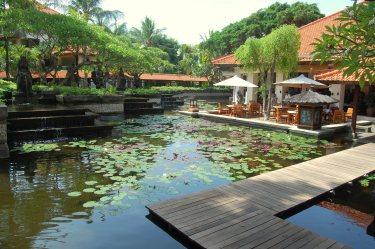 Bali 48